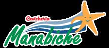 manabiche-x1